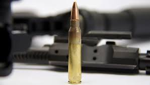 Is the 223 Remington a Viable Deer Cartridge North American