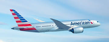 Aadvantage Executive Platinum Desk by American Airlines Case Study Professionally Written Papers At
