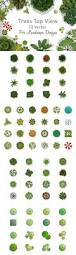 Polytree Christmas Tree Fuses by 8 Best Illustrator Stuff Images On Pinterest Landscape Design