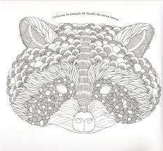 Realistic Coloring Pages Raccoon