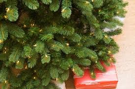 Christmas Tree Species Usa by The Best Artificial Christmas Tree Reviews By Wirecutter A New