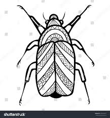 Template For Coloring Book Vector Decorative Beetle Adult
