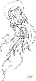 Click The Box Jellyfish Coloring Pages To View Printable