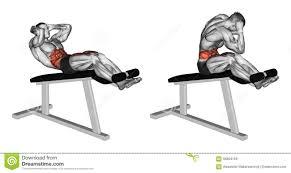 design hyperextension roman chair exercises roman chair