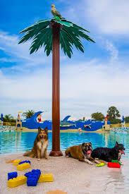 Spirit Halloween Lakeland Fl 2015 by Bring Your Dog To Legoland On Nov 8 Blogs