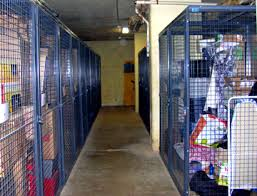 Tenant Storage Locker At A Condo Unit