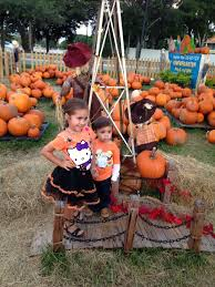 Pumpkin Patch Tampa 2014 by The 25 Best Pumpkin Patch Miami Ideas On Pinterest Map Of