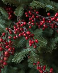 Winterberry Christmas Tree Farm by Woodland Elegance Christmas Tree Decorating Ideas