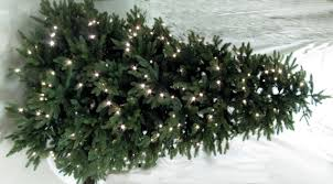 7 Ft White Pre Lit Christmas Tree by Artificial Christmas Trees Mini Unlit And Pre Lit Trees