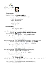 English Resume Format Example In Free Samples Extraordinary Job Application