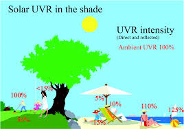 Uvb Lamp Vitamin D3 by Uvr Sun Lamps Pigmentation And Vitamin D Photochemical