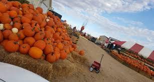 Chatfield Pumpkin Patch Hours by 10 Best Pumpkin Patches Around Denver In 2016