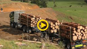 Aztec Logging Truck In New Zealand – Harvester Forwarder & More Self Loader Logging Truck Image Redding Driver Hurt In Collision With Logging Truck 116th Tg 410a Wcrane 3 Logs By Bruder Helps Mariposa County Authorities Stop High Speed Accidents Youtube Forest Service Aztec New Zealand Harvester Forwarder More Wreck Log Timber Poster Print 24 X 36 Logging Truck Fixed Bunk V10 Fs17 Farming Simulator 2017 17 Ls Mod Kraz 250 Spintires Mods Mudrunner Spintireslt Hi Res Stock Photo Edit Now Shutterstock