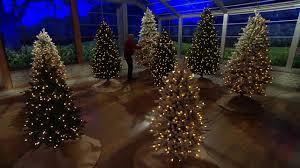 Best Fraser Fir Artificial Christmas Tree by Santa U0027s Best Balsam Fir Christmas Tree With Rgb 2 0 Technology On