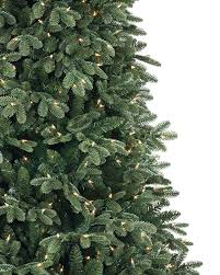 Types Of Live Christmas Trees by Fraser Fir Artificial Christmas Tree Treetopia