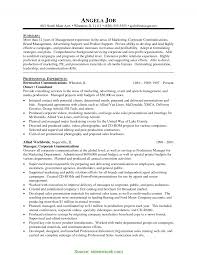 Complex Mis Manager Resume Objective Executive Sample In India