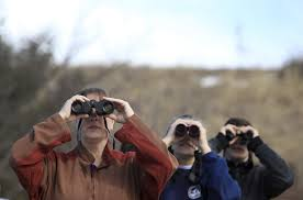 Birdwatchers Gather To Participate In The Great Backyard Bird ... Good Life Northwest Last Day Of The Great Backyard Bird Count Is The Youtube Imby Nrdc How Pools Are Made 7 Steps Place Educators Spin On It Image With Gardening Tbr News Media Audubon Center At Riverlands Florissant Fossil Beds Goes To Birds For Citizen Science On Radio Its Time Start Counting Birds Tbocom 2017 Wyncote Society Backyards Trendy 137 Chattanooga