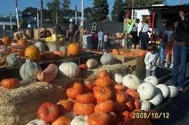 Pumpkin Patches In Bakersfield Ca by Pumpkin Patch In Culver City California Shawn U0027s Pumpkin Patch