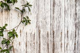 Rustic Wood Framed By A Green Leaf Vine Background Royalty Free Stock Photo