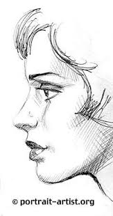 Drawing the profile portrait