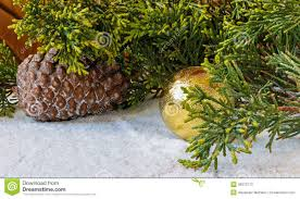 Pine Cone Christmas Tree Decorations by Christmas Decorations Pine Cones And Christmas Tree Branch In T
