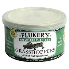 Flukers Turtle Clamp Lamp by Fluker U0027s Gourmet Style Grasshoppers Review Box Turtle World Reviews