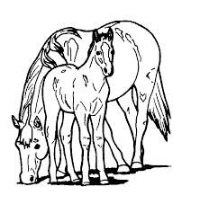 Free Printable Coloring Pages Of Horses Horse For Kids