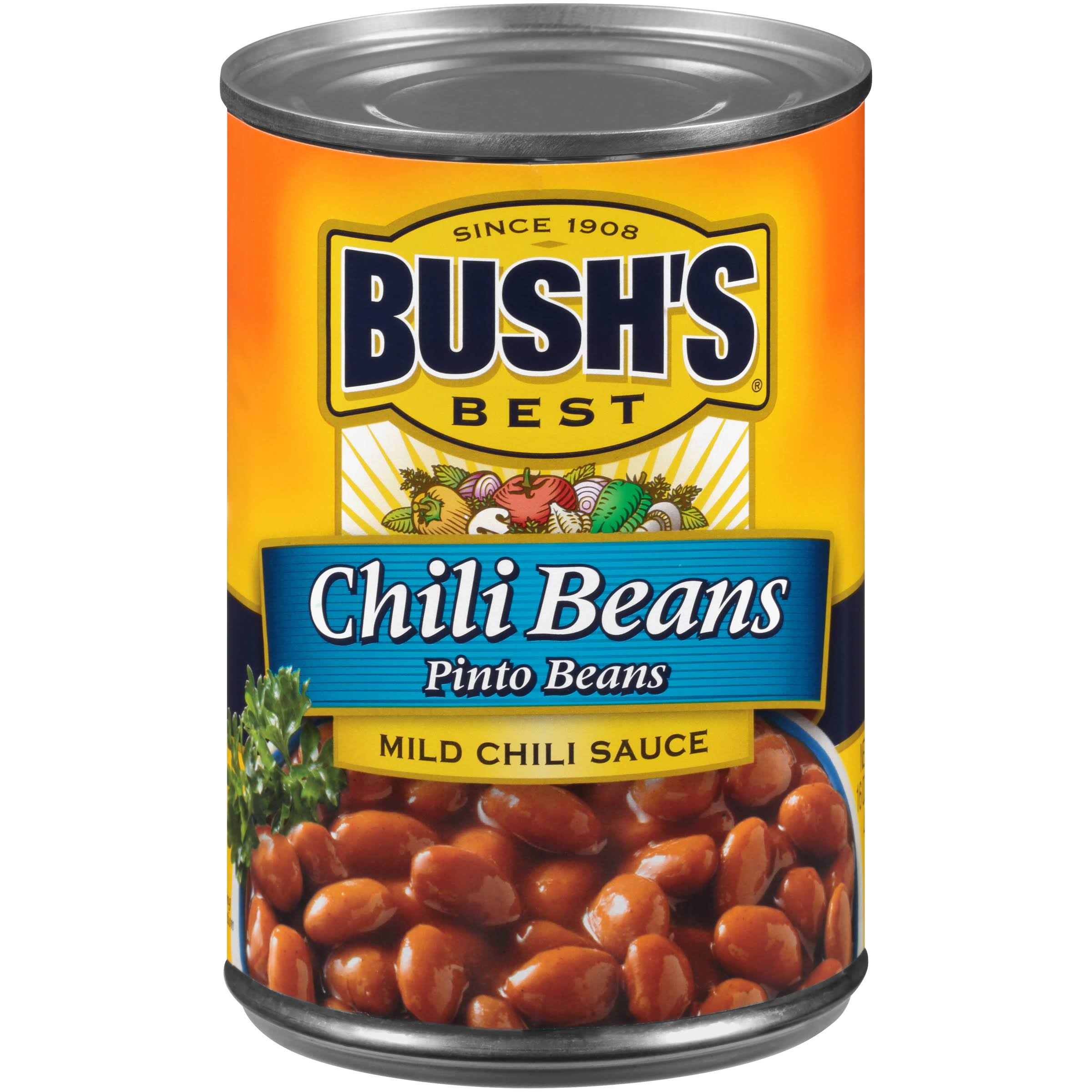 Bush's Best Mild Chili Sauce Pinto Beans - 16oz