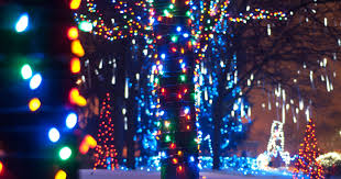 Kroger Christmas Tree Lights by Christmas Themed Activities Available All Over Metro Detroit