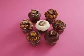 Chocolate Bars Daily Specials Group Rev0 Cupcake FAQs