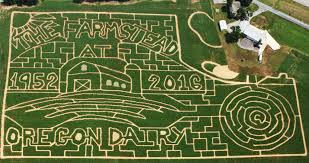Pumpkin Picking Near Lancaster Pa by Get Lost Corn Mazes For 2016 In Central Region Of Pa Pennlive Com