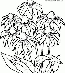 Colouring Free Printable Coloring Pages Flowers New At Interior Desktop An Attribute Of 10 Picture