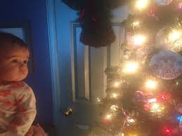 Kroger Christmas Tree Lights by Rose And Her Lily November 2016