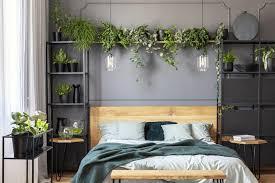 pflanzen im schlafzimmer 13 gute gründe schöner wohnen