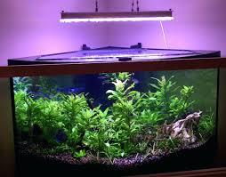 Aquarium Lights Led Aquarium Light Aquarium Lights Petco – aquarafo