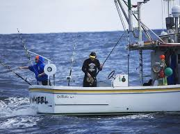 Wicked Tuna Outer Banks Boat Sinks by Pin Wheel Wicked Tuna Outer Banks Gallery National Geographic