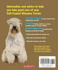 Do Wheaten Terriers Shed by Soft Coated Wheaten Terriers Complete Pet Owner U0027s Manual