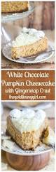 Gingersnap Pumpkin Pie Cheesecake by Best 25 Gingersnap Crust Ideas On Pinterest Eggnog Cheesecake