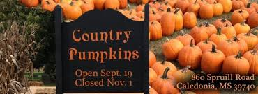 Boyd Tx Pumpkin Patch by 14 Great Mississippi Pumpkin Patches To Check Out This Fall