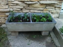 Soapstone Utility Sink Craigslist by Repurposed Concrete Sink Basin As Raised Planter We Now Have
