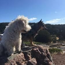 crocker amazon dog park 10 photos 22 reviews dog parks