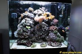 pompe a chaleur aquarium aquarium recifal redseamax 130 130d 250