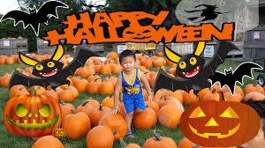 Best Pumpkin Patches Indianapolis by Pumpkin Patch Pumpkin Picking U0026 First Time Pumpkin Carving