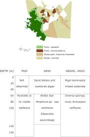 International U2013 Dead By Words by Baseline Seabed Habitat And Biotope Mapping For A Proposed Marine