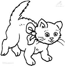 Wonderful Cat Coloring Pages Cool Design Gallery Ideas