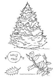 Holly Tree Colouring Page