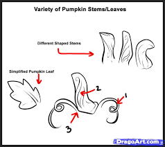 how to draw pumpkins step 2