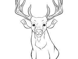 Reindeer Face Coloring Page Deer Head Pages