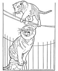 Circus Tiger Coloring Page