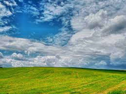 Free Images Landscape Nature Outdoor Horizon Cloud Sky Sun Field Meadow Prairie Countryside Sunlight Hill Flower Wind Country Summer